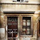 Antique Door, Rome by Roz McQuillan