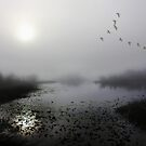 Into the Mist by BethBernier