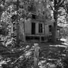 Delapidated Cabin by Herb Spickard
