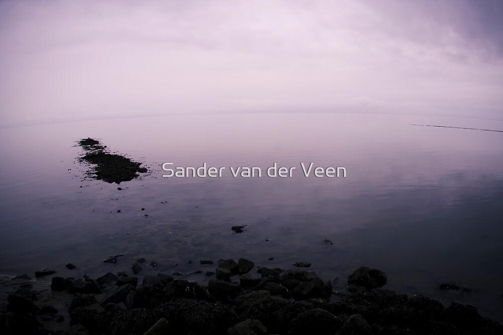 End of the World by Sander van der Veen