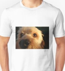 Boris the Cavoodle Unisex T-Shirt