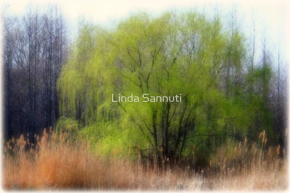 Greentree by Linda Sannuti