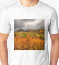 Colorado Fall Colors  Unisex T-Shirt