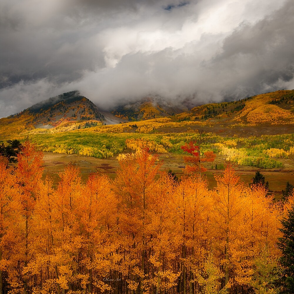 Colorado Fall Colors  by LENA OWENS @OLena Art