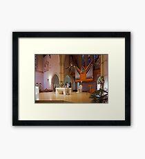 St Stephen's Cathedral Framed Print