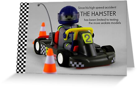 The Hamster by Mark Wilson