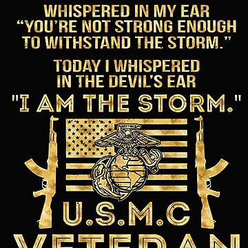 Veteran I am the storm by markcool