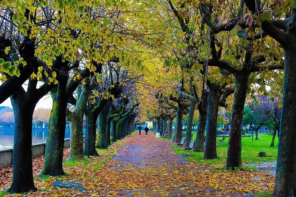 Afternoon walk in autumn by matbiz777