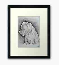 lab Framed Print