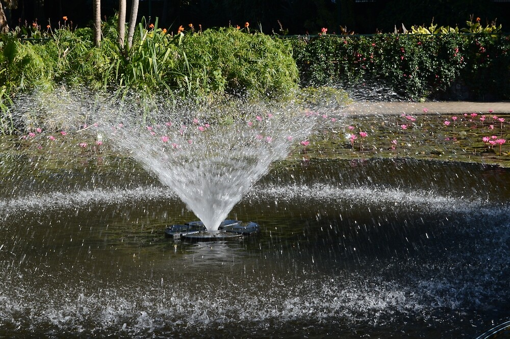 City Fountain - Botanical Gardens by Kerry LeBoutillier