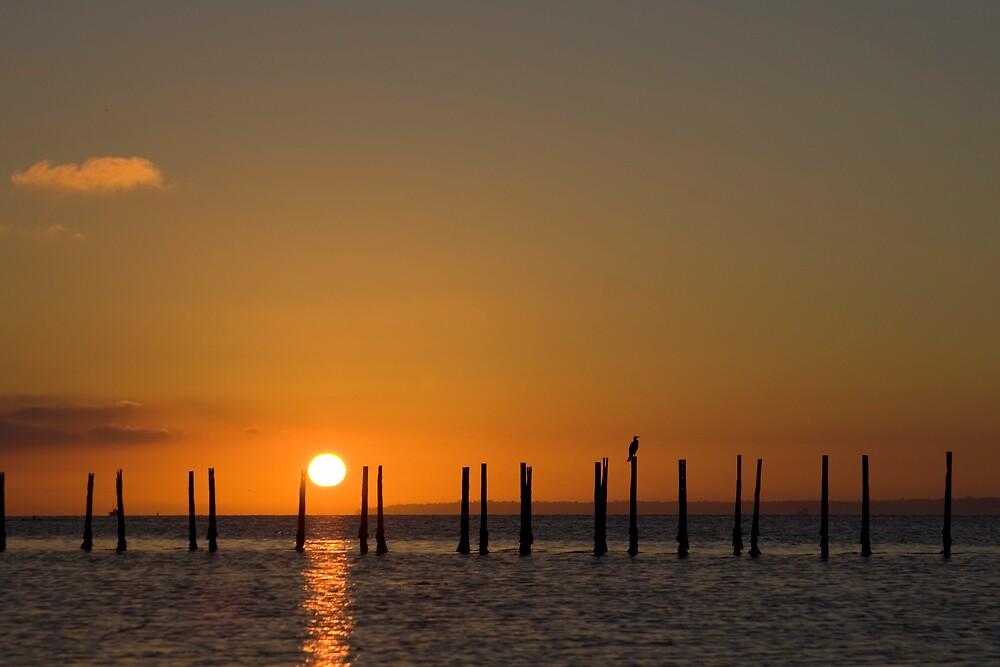 Solent Sunrise by kevomanno