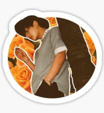 BTS Taehyung Sticker Sticker