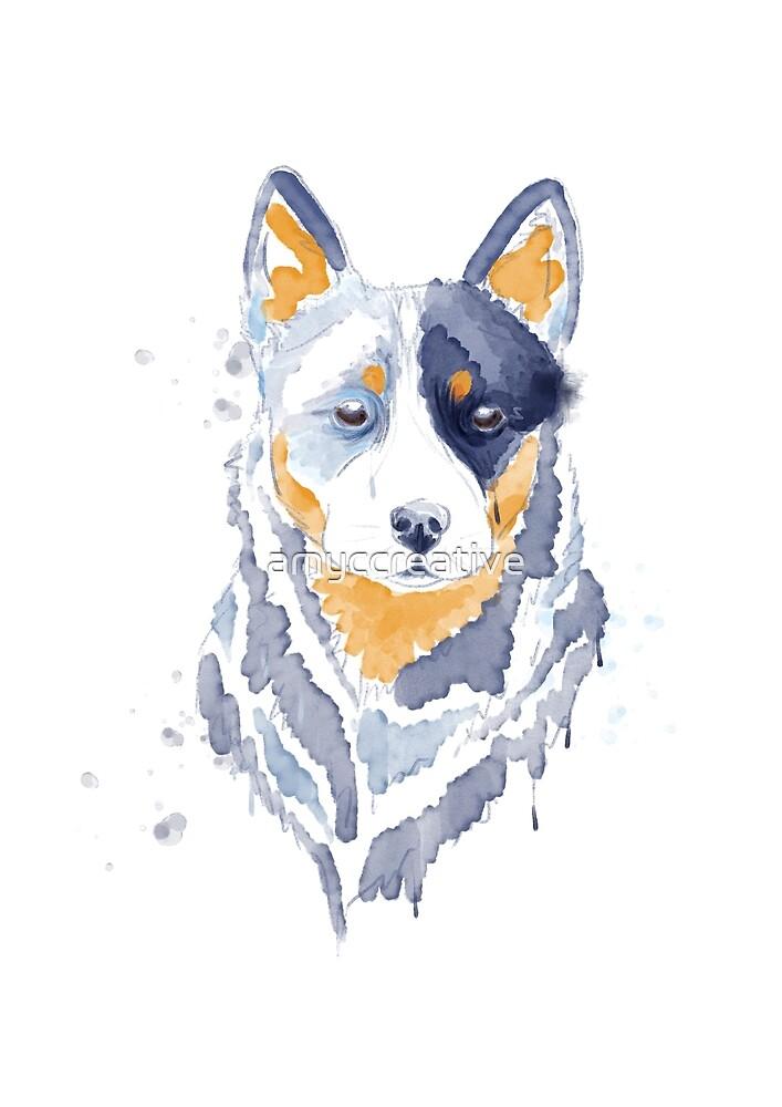 Australian Cattle Dog Blue by amyccreative