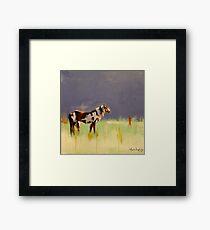 Horse on the plains Framed Print