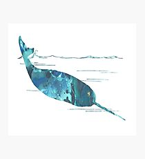 narwhal art Photographic Print