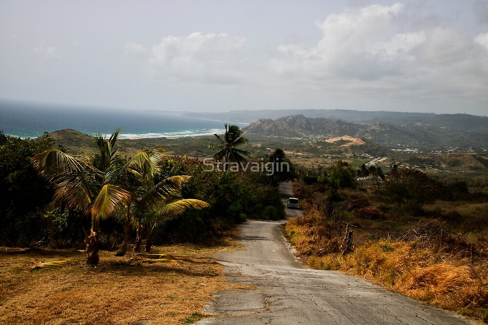 This Old Road, East Coast, Barbados by Stravaigin