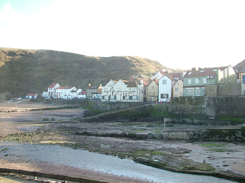 the beautiful Staithes by dougie1