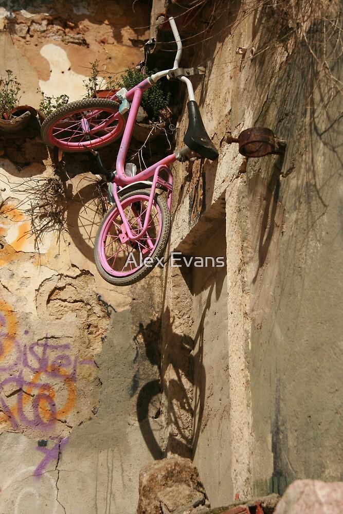 Pink Bike by Alex Evans