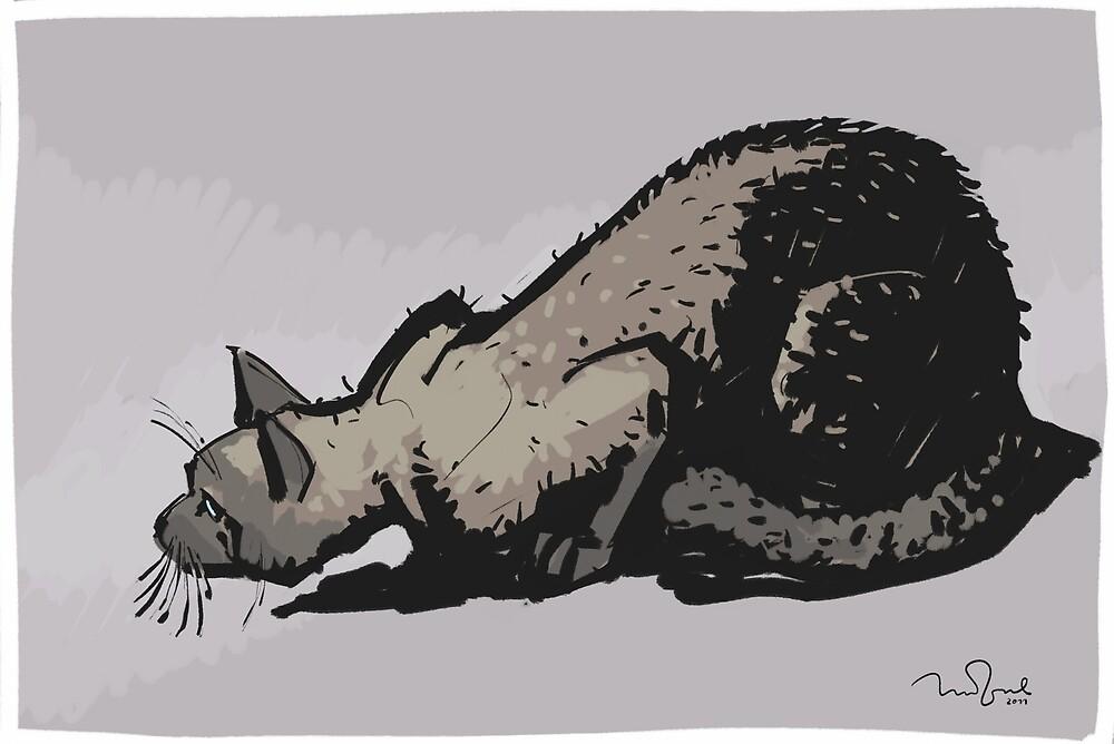 Cat by Penko Gelev
