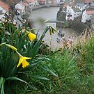 Staithes 3 by dougie1