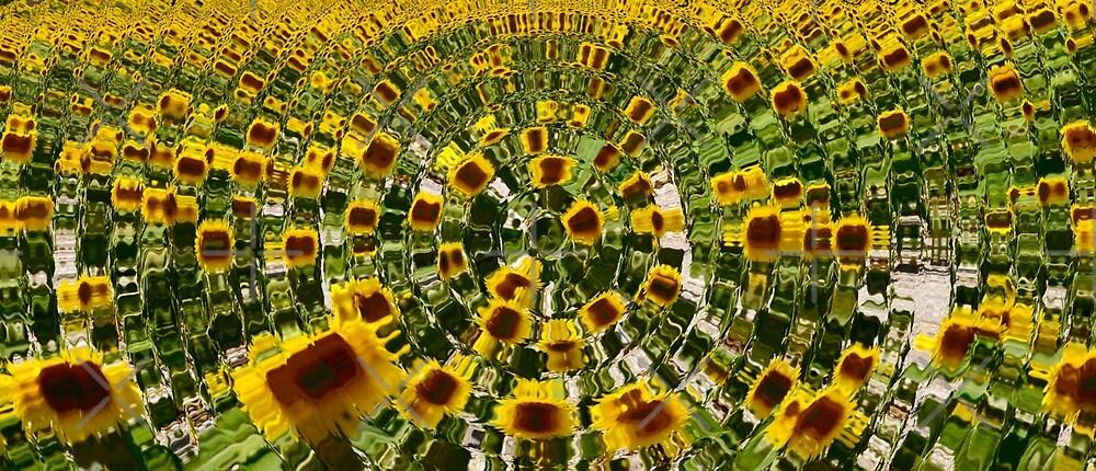 Sunflower wave by Wobblydogphotos
