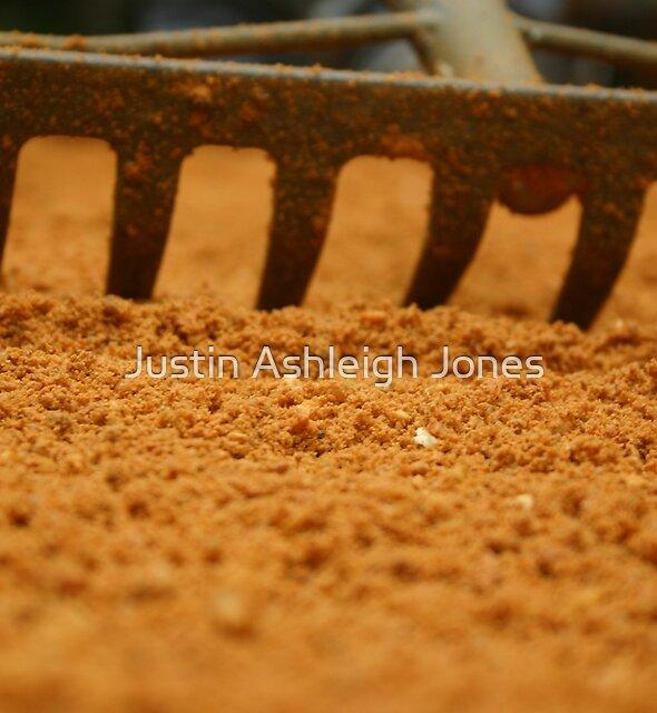 Sand Rake by Justin Ashleigh Jones