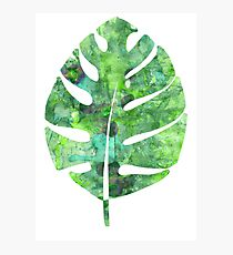 tropical green watercolor (1) Photographic Print