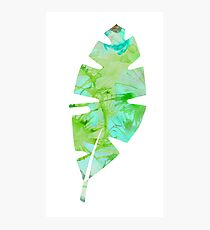 tropical green watercolor (2) Photographic Print
