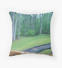 View from Backdoor Throw Pillow