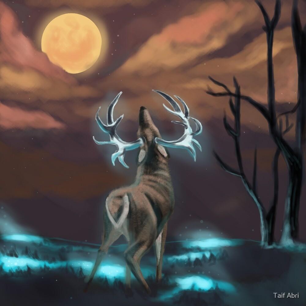 Reindeer by Taif Abri