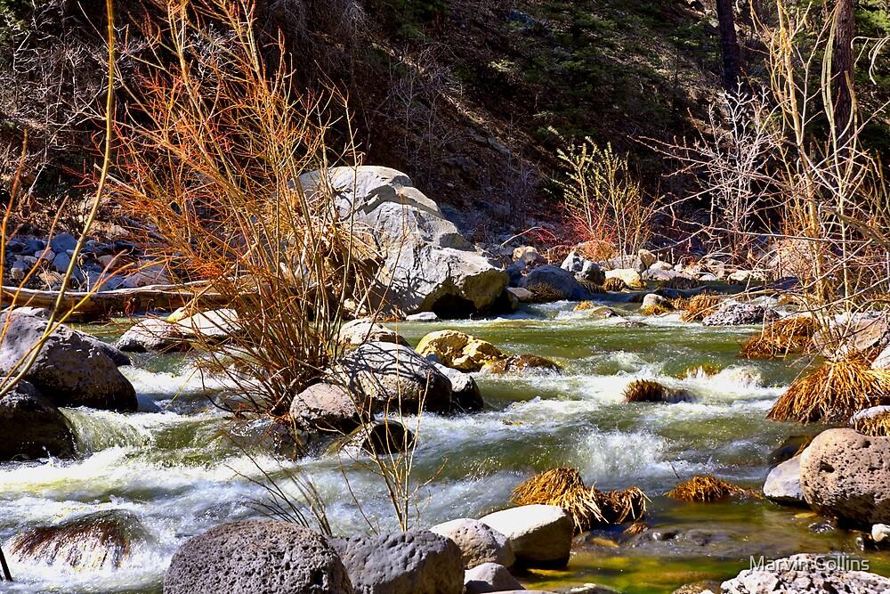 Oak Creek by Marvin Collins