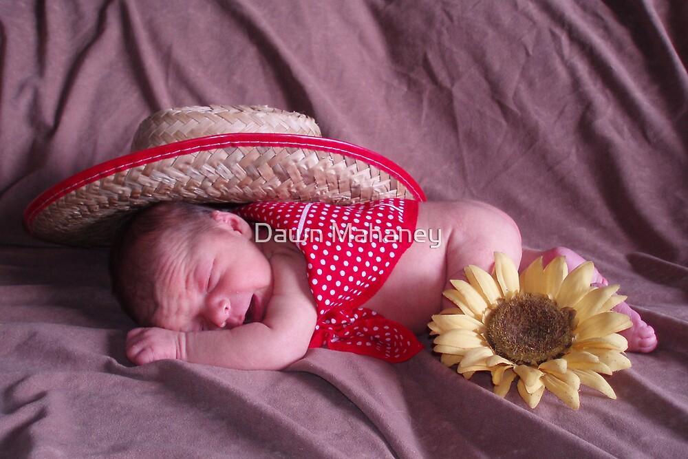 Little Cowboy by Dawn Mahaney