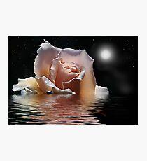 moonlight cruise Photographic Print