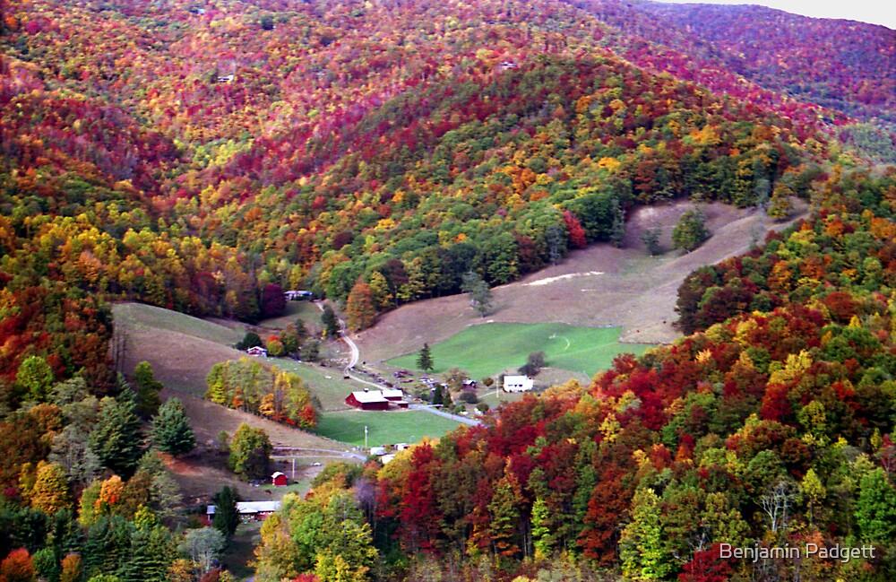 Farm Foliage, North Carolina by Benjamin Padgett