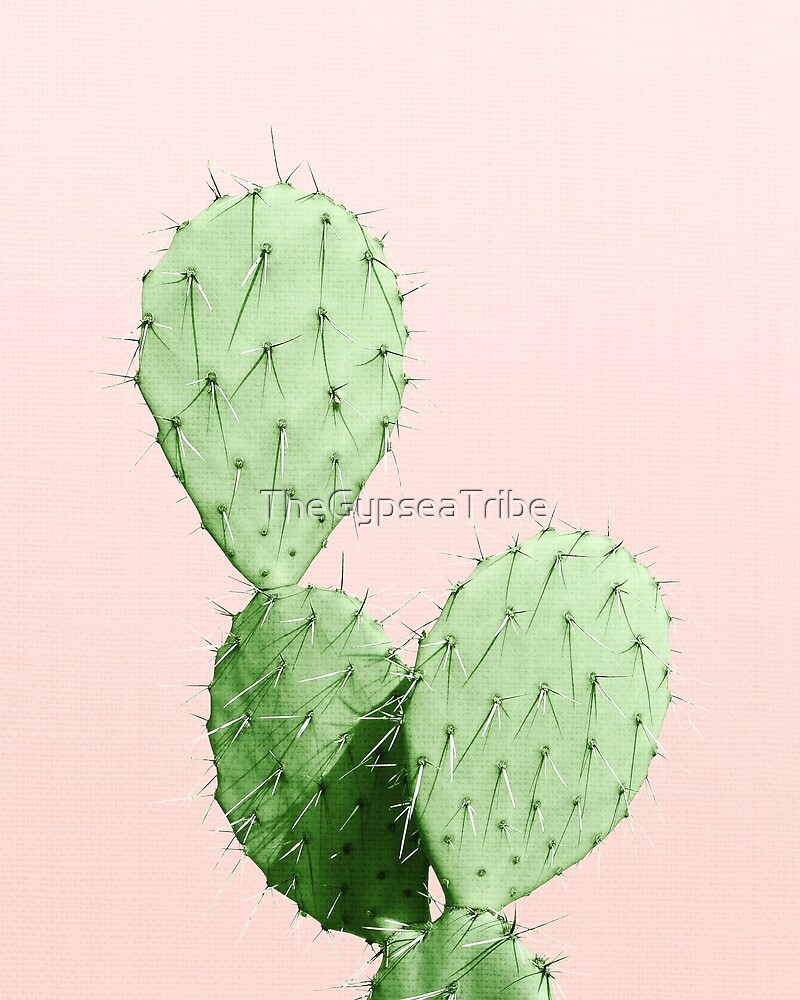 CACTUS by TheGypseaTribe