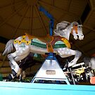 Over The Jumps Carousel by WildestArt