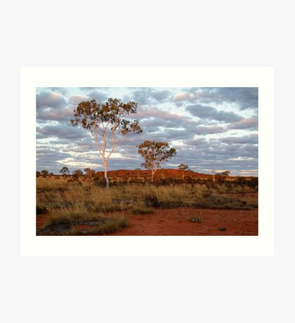 Sunset Ghost Gums,Batton Hill, North Simpson Desert Art Print