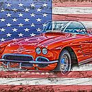 All American Beauty by designingjudy
