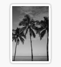 Hawaiian Palms II Sticker