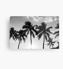 Hawaiian Palms III Metal Print