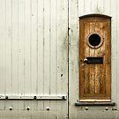 Little Door of Mystery No.6 by Corbin Adler