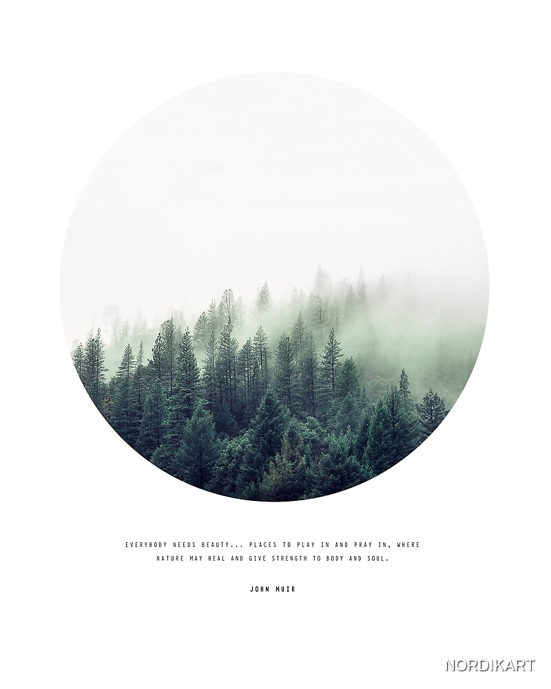 FOREST & Quote by John Muir by NORDIKART