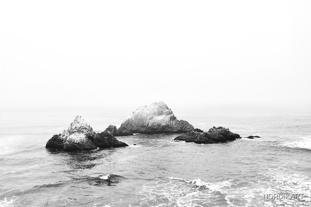OCEAN Black & White by NORDIKART