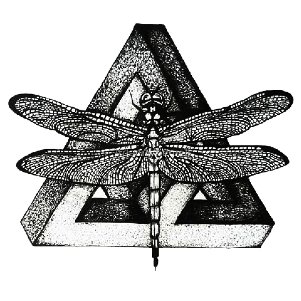 Dragonfly with illusions  by AdamWhewell