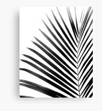 PALM LEAF Black & White Canvas Print