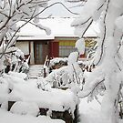 Our House in Romania 2 days After Christmas Day by Dennis Melling