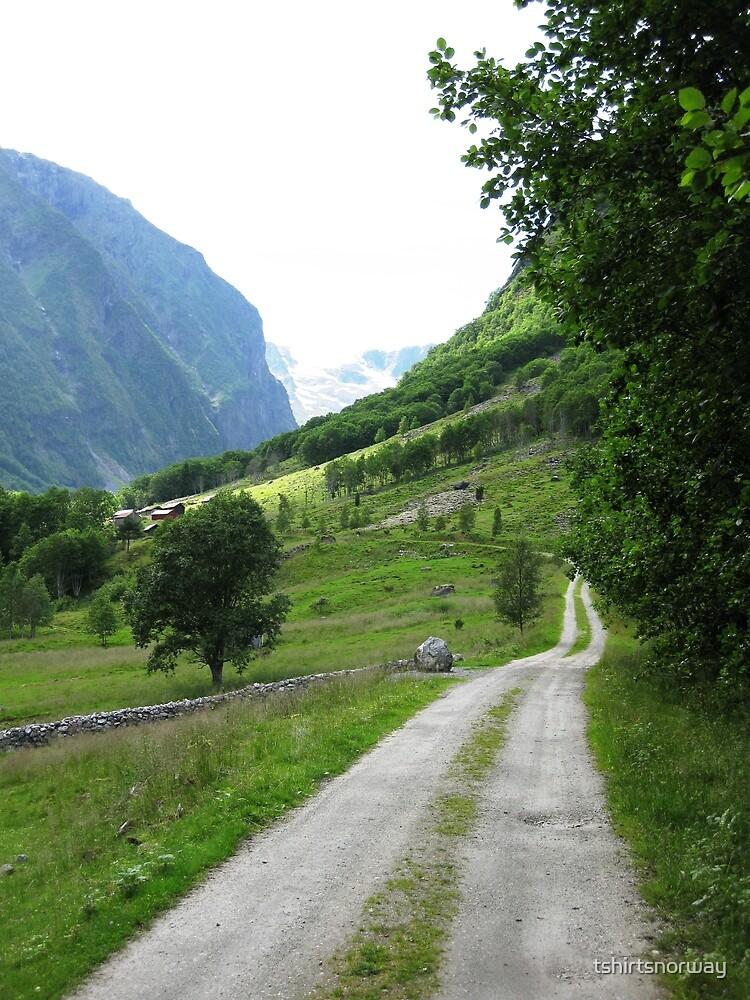 Norwegian road in Sogn og Fjordane by tshirtsnorway