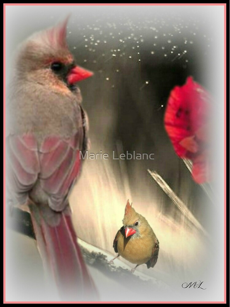 NO MATTER HOW DIFFERENT WE ARE, THERE IS ALWAYS ROOM . by Marie Leblanc
