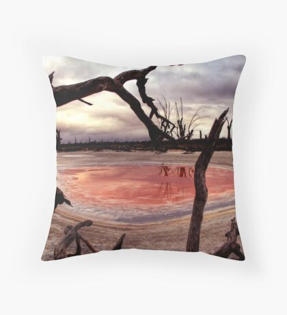 Salt pan Throw Pillow