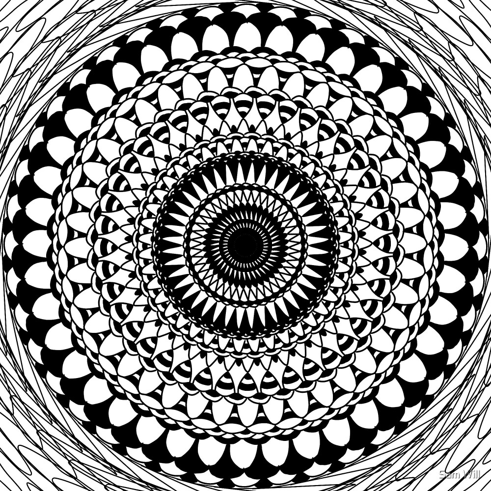 Black & White Abstract by Sam Will